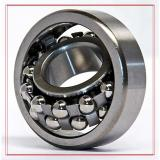 NSK 1213J Self Aligning Ball Bearings