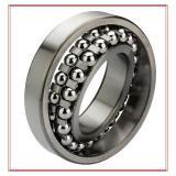 FAG 2311-2RS-TVH Self Aligning Ball Bearings